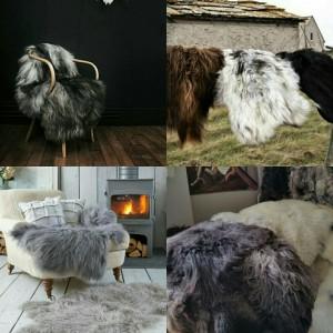 schapenhuiden nieuw